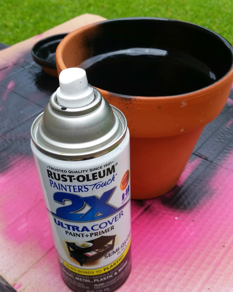 using Rust-Oleum Painters Touch to change the appearance of a terra cotta pot